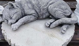Nowy Dwór Mazowiecki. Kradzież figurki kotka z grobu 8-latka. Rodzina prosi o zwrot