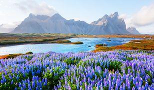 Islandia w ostatnim czasie staje się coraz bardziej popularnym kierunkiem turystycznym