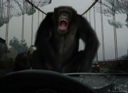 Geneza Planety Małp - fragment filmu 3