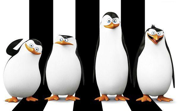 """""""Pingwiny z Madagaskaru"""" na DVD"""