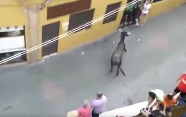 Rzeź na ulicach Hiszpanii. Byk w święto dokonał masakry