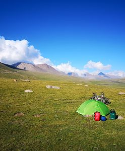 Dzika przyroda pod rozgwieżdżonym niebem. Egzotyczny Kirgistan