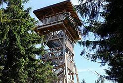 Wakacje 2020. Nowa wieża widokowa dla turystów na szczycie Radziejowej