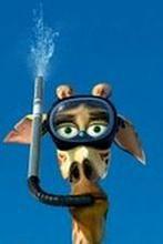 Box Office USA: Triumf zwierzaków z Madagaskaru