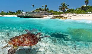 Meksyk - turyści na nowo odkryli ten kraj