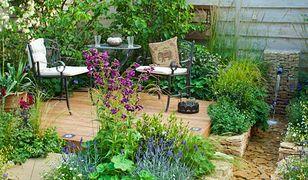 Mały ogród: projekt i aranżacja