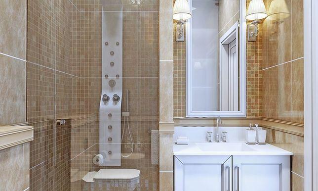 Głównym problemem polskich łazienek jest ich wielkość czy raczej: małość.
