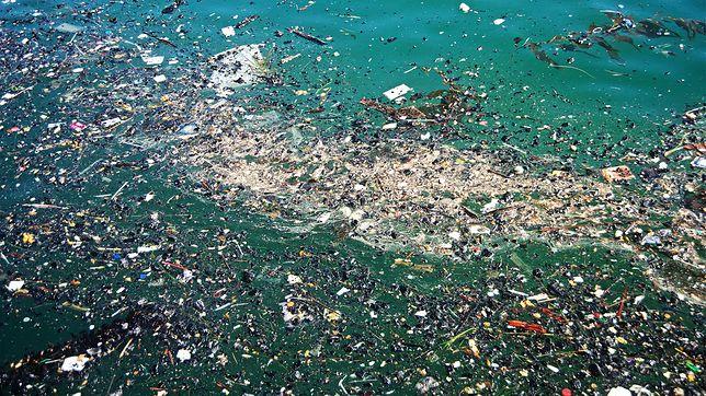 Trash Isles - tak miałoby się nazywać państwo utworzone na terenie Wielkiej Pacyficznej Plamie Śmieci