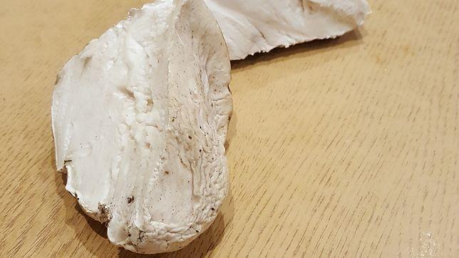 Wysyp grzybów w lasach. Czytelnicy chwalą się zbiorami