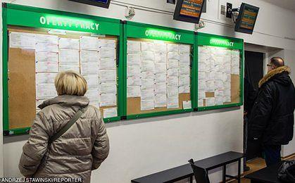Bezrobocie w Polsce. Pod koniec 2016 rkou było blisko 78 tys. wolnych miejsc pracy