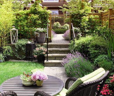 6 pomysłów na piękny, ale niedrogi ogród. Podpowiadamy, jak go urządzić, nie wydając milionów