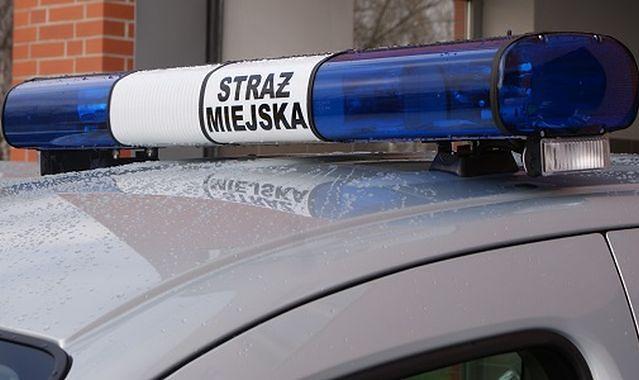 Strażnicy miejscy ukradli nietrzeźwemu 1200 zł? Jest zapis z monitoringu