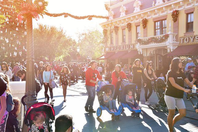 Pożar w Disneylandzie. Wyłączyli prąd, ale parku nie zamknęli