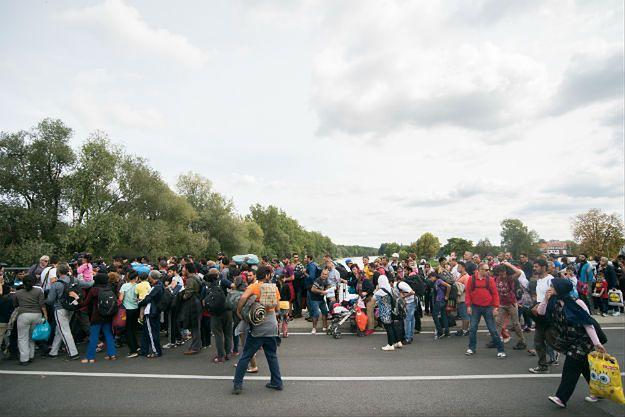 Austria: rośnie liczba migrantów napływających z Węgier