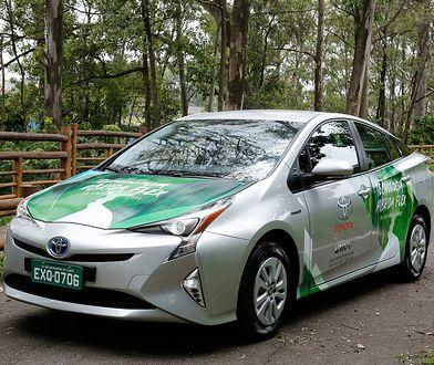 Z europejskiego punktu widzenia to trochę absurdalny pomysł opracowania samochodu, który wyeliminuje jeden czynników potrzebnych do produkcji paliwa