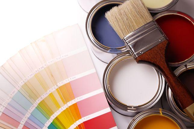 Malowanie ścian bez błędów. Jak stosować farby, by uzyskać idealne kolory ścian?