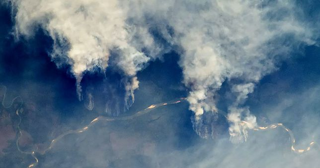 Amazonia i Afryka płoną - czy te zjawiska można porównać? Co pożary oznaczają dla klimatu