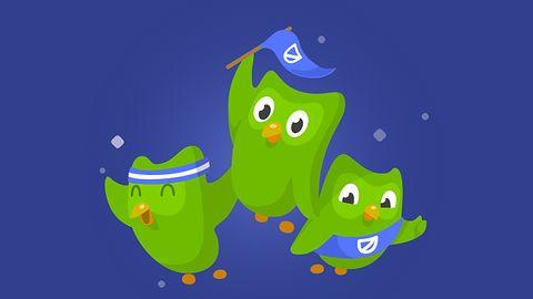 Ważna nowość w Duolingo – nauka języków możliwa w gronie znajomych