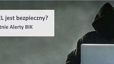 Alerty Biura Informacji Kredytowej przez rok za darmo - Zrzut z www.bik.pl