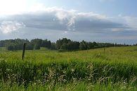 Pani Krysia z księgowości – odcinek 17: Nic… Nie działa nic… - Jeden z obrazków chamsko podkradziony z google grafika, zaatakował mnie kiedy wpisałem hasło Góry, lasy, łąki, pola…. Więc wkleję go tutaj.