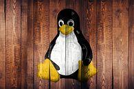 10 powodów, dlaczego Linux jest tak mało popularny. Opinia neutralnego windowsiarza - Fot: Pixebay