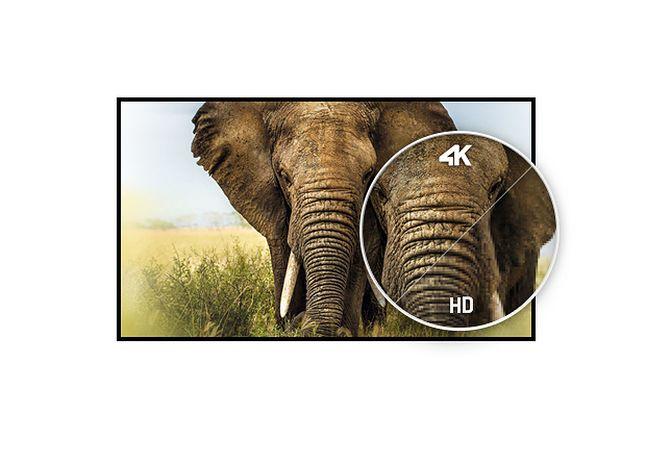 iiyama ProLite X4372UHSU-B1 oferuje rozdzielczość 4K, fot. materiały prasowe.