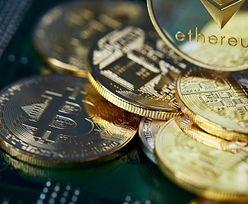 Kilka zaskakujących ciekawostek na temat Bitcoina, które mogą Cię zaskoczyć