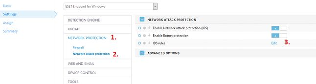 Rys. 2 okno Network Protection