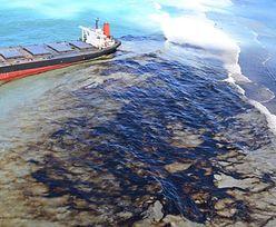 Dramat na Mauritiusie. Ropa wciąż cieknie, a statek... Przerażające ustalenia