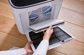 Kiedy potrzebny jest w domu nawilżacz, a kiedy oczyszczacz powietrza?