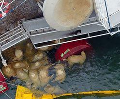 Ogromna tragedia na morzu. Wszystko w tajemnicy