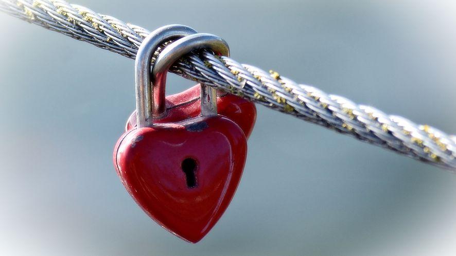 Jeden głównych certyfikatów SSL właśnie wygasł (fot. Manfred Antranias Zimmer, Pixabay)