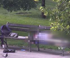 Czechy. Kobieta nawet nie zapięła bluzki! Nagranie z parku w Pradze