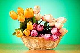 7 domowych sposobów na przedłużenie żywotu kwiatów ciętych. Poznaj sekrety naszych babć