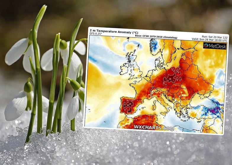 Kiedy w końcu będzie ciepło? Oto wyczekiwane informacje