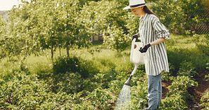 Ukryj pieluchy w ogrodzie. Ten trik odmieni twoje życie