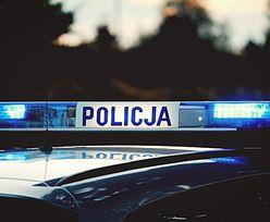 Łódź. Kierowca zadał nietypowe pytanie policjantom. Trafił do więzienia