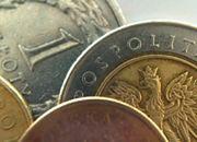 Pawlak: kurs złotego do euro między 4 a 4,5