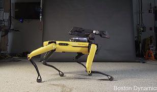 Roboty Boston Dynamics wyznaczają trendy w dziedzinie robotyki