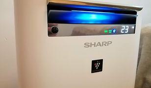 Sharp KC-G. Oczyszczacz dla wymagających ale leniwych