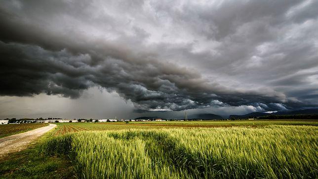 W całym kraju pochmurnie i burzowo. Pogoda na najbliższe dni