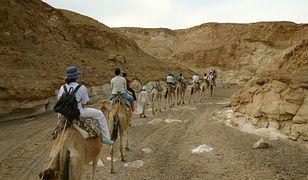 Wakacje 2021. Egipt wprowadza nowe zasady wjazdu