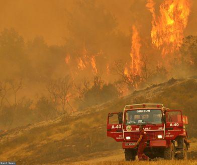 """Pożary w Turcji. Wstrząsające relacje polskich turystów. """"Nie widać słońca"""""""