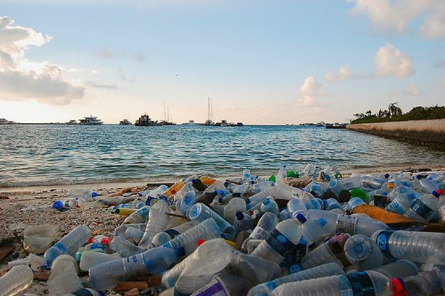Katastrofa ekologiczna nieunikniona? Naukowcy szacują: 710 mln ton plastiku do 2040 roku