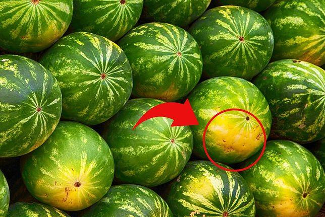 Jak wybrać dojrzałego arbuza? Zwróć uwagę na jeden szczegół