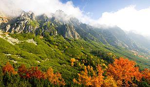 Słowacja to Tatry Niskie i Tatry Wysokie, szczególnie atrakcyjne jesienią