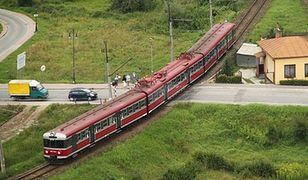 Koleje w Polsce potrzebują wspólnego biletu. Eksperci o ważnym zadaniu nowych prezesów PKP