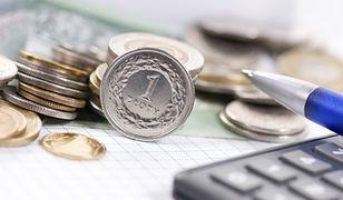 Nowe trzynastomiesięczne obligacje skarbowe dostępne od piątku w internecie