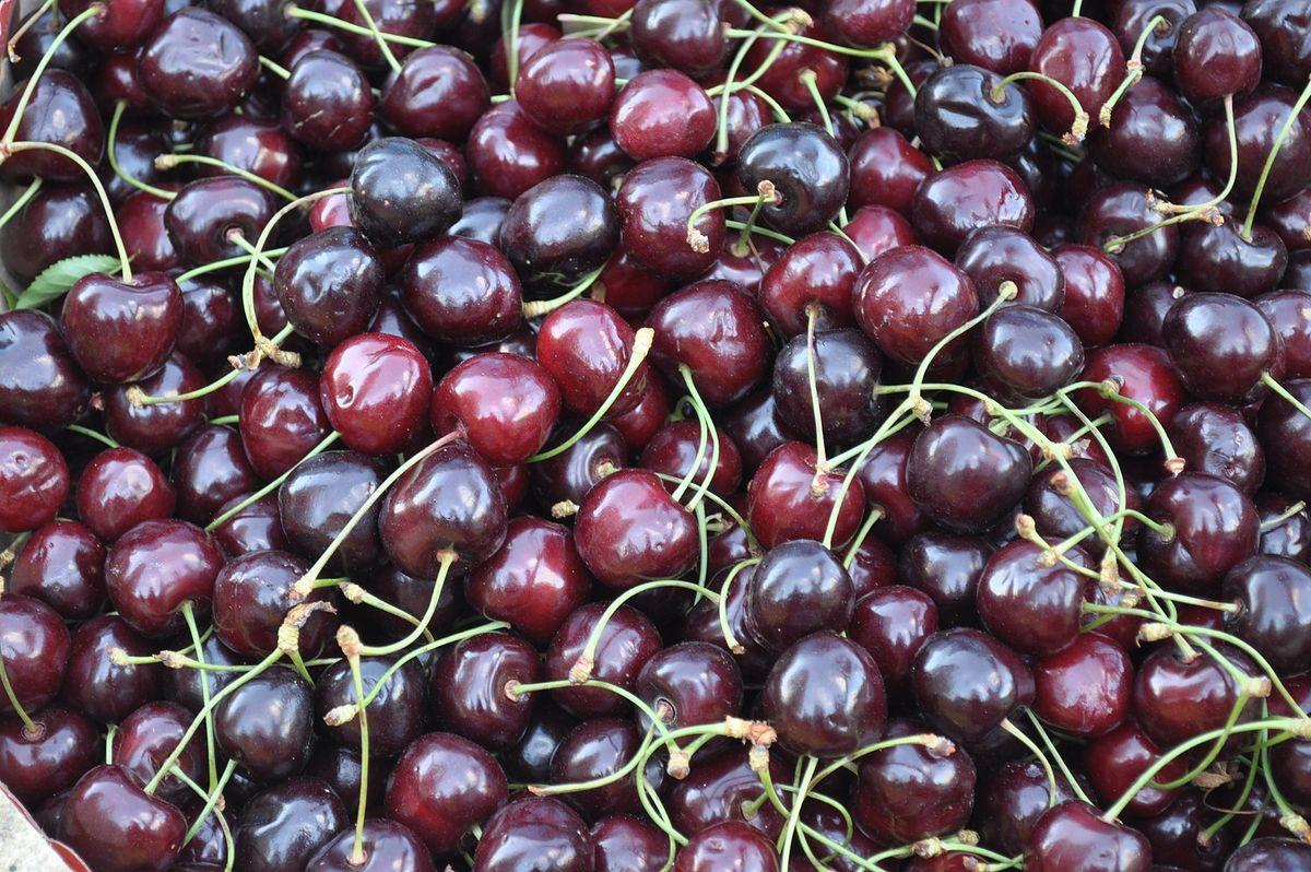 Można już kupić polskie czereśnie. Sadownicy mają problem ze znalezieniem zbieraczy
