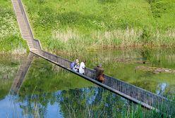 Niewidzialny most. Niezwykła atrakcja Holandii